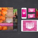 Diseño web marbella - naran-ho