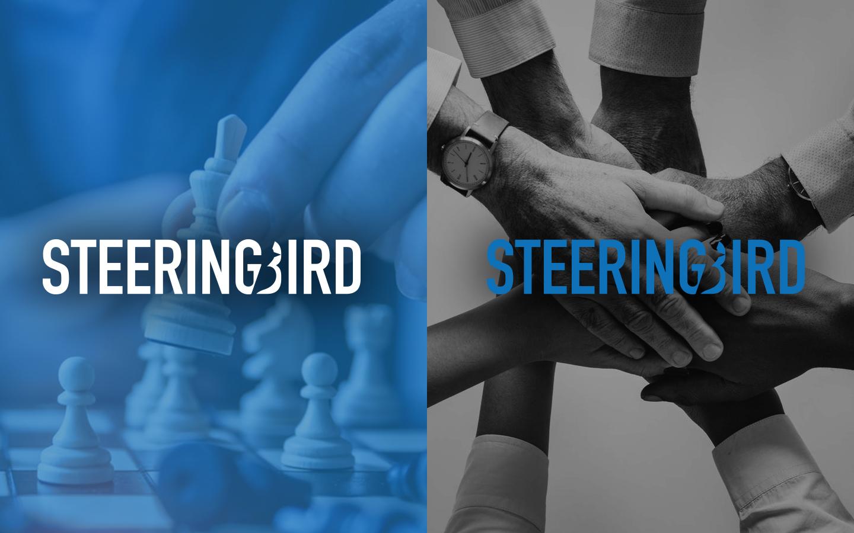Steeringbird Branding Design & Web Design by NARAN-HO.COM